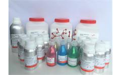Steady Resin NEU Komplett ab Lager lieferbar